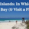 Featured Image Hike To Tortuga Bay 6.7.16