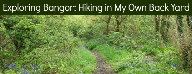 Exploring Bangor Hiking In My Own Back Yard May 2014
