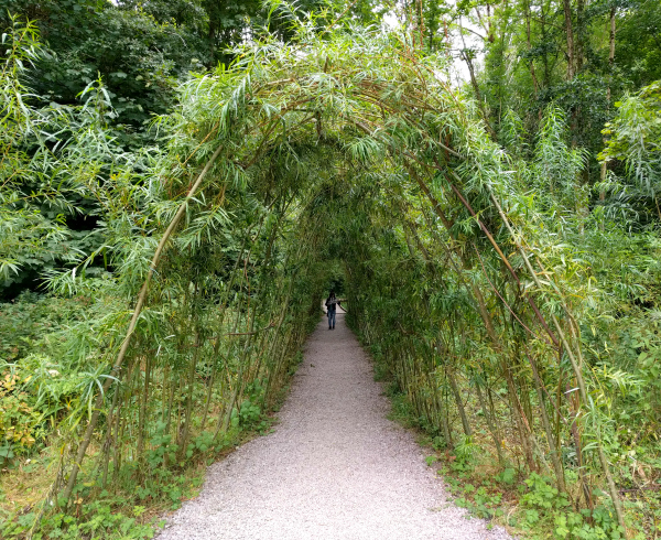 living-tunnel-blarney-castle-ireland-taken-8-13-16-by-ff